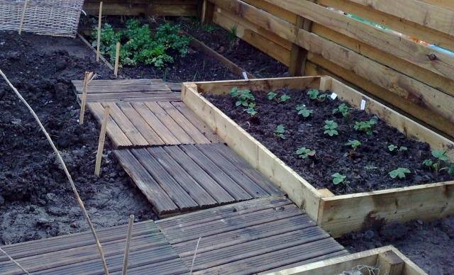 raised_bed_7