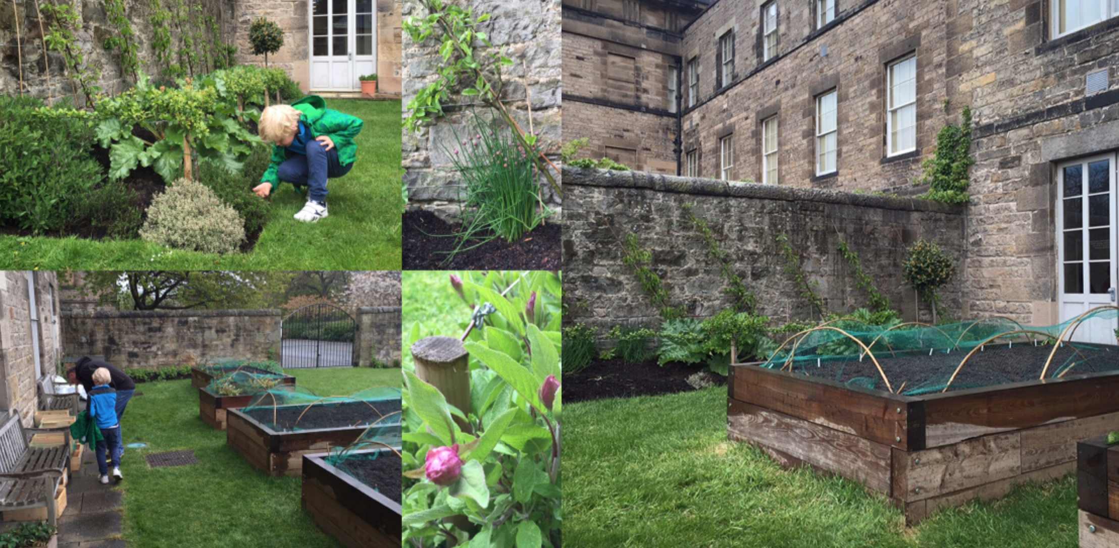 Walled Kitchen Gardens My Shetland Garden Hello And Welcome To My Shetland Garden This